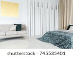 patterned blanket on bed and...   Shutterstock . vector #745535401