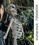 halloween skeleton decoration | Shutterstock . vector #745606504