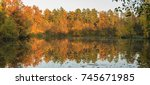 golden autumn | Shutterstock . vector #745671985