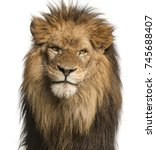 close up of a lion facing ... | Shutterstock . vector #745688407