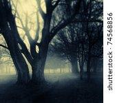 Foggy Darkened Path Leading...