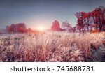 Small photo of Frosty autumn landscape of november nature at sunrise. Scenery colorful autumn with hoarfrost.