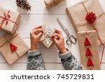 creative hobby. woman's hands... | Shutterstock . vector #745729831