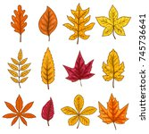 set of autumn leaves isolated... | Shutterstock .eps vector #745736641