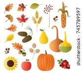 autumn fruit and foliage   Shutterstock .eps vector #745789597