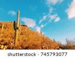 Arizona And Blue Sky