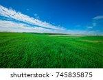 gress  green field | Shutterstock . vector #745835875