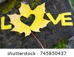 bright yellow maple leaves on... | Shutterstock . vector #745850437