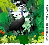 vector cassowary in jungle... | Shutterstock .eps vector #745872091