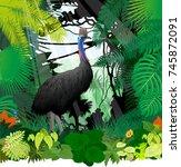 vector cassowary in jungle... | Shutterstock .eps vector #745872091