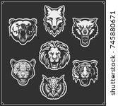 set of animals  tiger  owl  fox ...   Shutterstock .eps vector #745880671