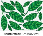 abstract vector pattern of... | Shutterstock .eps vector #746007994