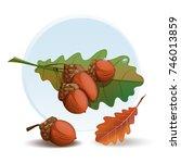 cartoon acorns set. oak branch...   Shutterstock .eps vector #746013859