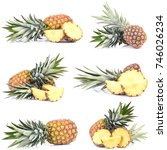 pineapple fruit | Shutterstock . vector #746026234