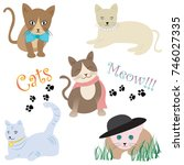 cute cats illustration set ... | Shutterstock .eps vector #746027335