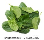 spinach leaves isolate on white ... | Shutterstock . vector #746062207