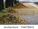 a heap of autumn leaves on the... | Shutterstock . vector #746078641