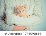 Stock photo cute little red kitten is sitting on his hands kitten in the hands red haired kitten soft tone 746090659