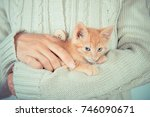 Stock photo cute little red kitten is sitting on his hands kitten in the hands red haired kitten soft tone 746090671
