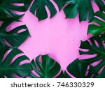 Monstera Leaf Frame On Pink...