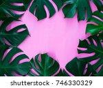 Monstera Leaf Frame On Pink...