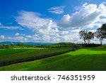 tea plantation field with... | Shutterstock . vector #746351959