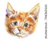 hand draw  portrait of red cat. ... | Shutterstock . vector #746363161