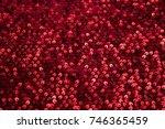 rectangular red shiny fabric... | Shutterstock . vector #746365459