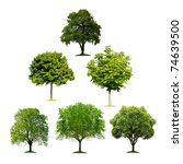 collection of isolated trees | Shutterstock . vector #74639500