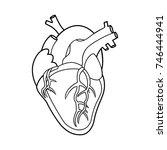human heart contour | Shutterstock .eps vector #746444941
