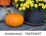 Pumpkin And Flower Pot