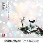 black bird sitting on pine tree ... | Shutterstock .eps vector #746563219