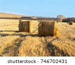 Rural landscape field meadow with hay bales after harvest in sunny evening at sunset or sunrise in late summer. Blue sunny sky.