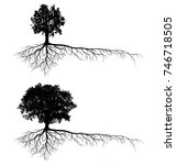 big tree silhouettes with root... | Shutterstock . vector #746718505