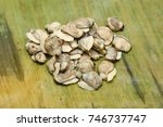 Fresh Raw Clam Or Shellfish...