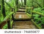 Lichen Wooden Bridge At Doi...