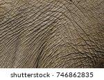 the delicate  wrinkled skin of... | Shutterstock . vector #746862835