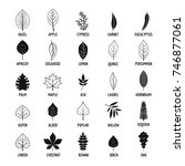 leaf icons set. simple... | Shutterstock .eps vector #746877061