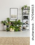 Small photo of Bright room filled with green plants with simple poster on white wall