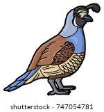 quail | Shutterstock .eps vector #747054781