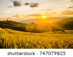 landscape of green rice fields. ... | Shutterstock . vector #747079825