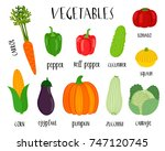 bright flat vegetables vector... | Shutterstock .eps vector #747120745