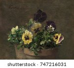 potted pansies  by henri fantin ... | Shutterstock . vector #747216031