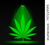 hemp leaf grows in lamp lights. ... | Shutterstock .eps vector #747219595