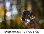 Crystal Ball  Beautiful...