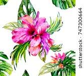 watercolor magic hand drawn... | Shutterstock . vector #747300664