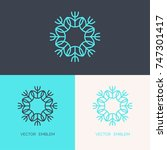 simple and stylish monogram... | Shutterstock .eps vector #747301417
