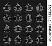 pumpkin thin white line... | Shutterstock .eps vector #747321031