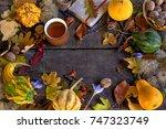 autumn background of beautiful ... | Shutterstock . vector #747323749