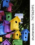 colorful bird houses closeup... | Shutterstock . vector #747362491